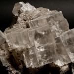 Agregat regularnych kryształów halitu na iłowcu solnym
