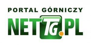logo-nettg-2