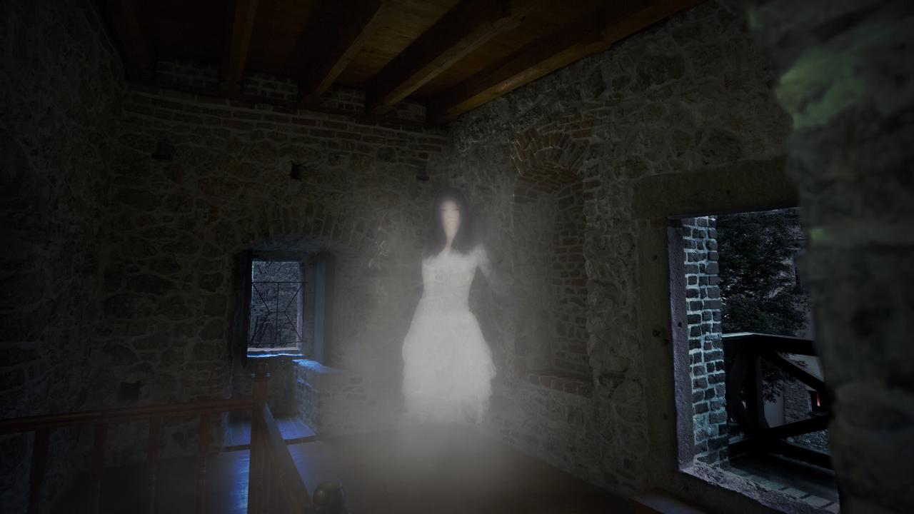 Tajemnicza Dama na zamku