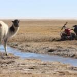 Bolivia, photo Piotr Strzeżysz