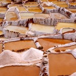Peru, Saliny w Maras, fot. Joanna Kocik
