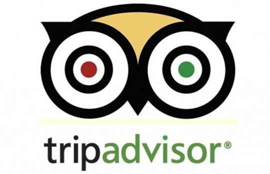 TripAdvisor doceniło Muzeum