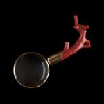 Lupa (koral, złoto, szkło) Kolekcja Adama Leja