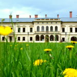 Katarzyna Juraszek l. 17 - Pałac w Żywcu - Zespół Szkól Budowlano Drzewnych w Żywcu